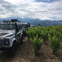 Uncharted Escapes: Private Exclusive Manousakis Winery and Vineyard Tour
